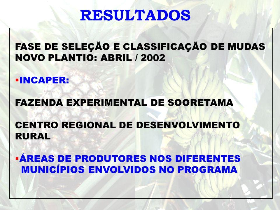 RESULTADOS FASE DE SELEÇÃO E CLASSIFICAÇÃO DE MUDAS NOVO PLANTIO: ABRIL / 2002 INCAPER: FAZENDA EXPERIMENTAL DE SOORETAMA CENTRO REGIONAL DE DESENVOLV