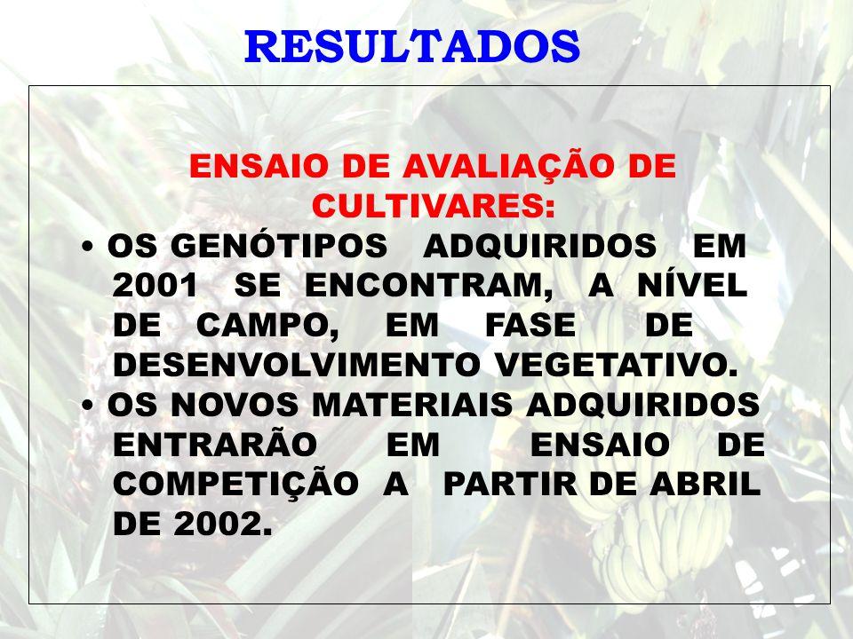 NOME ÁREA DE CONHECIMENTO TITULAÇÃO FUNÇÃO Adelaide F.