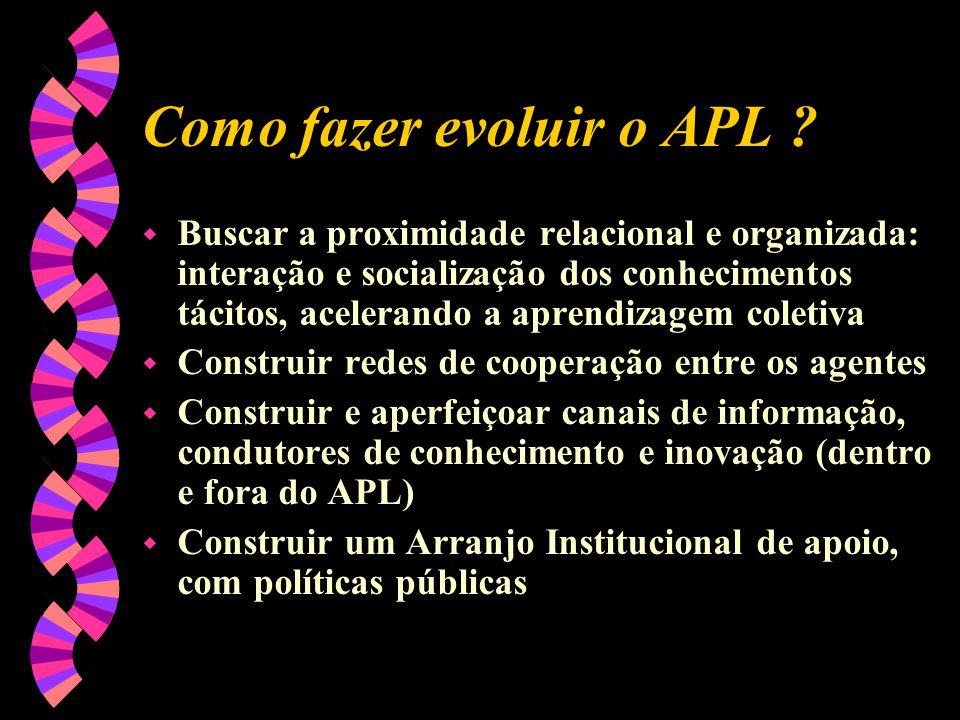 Como fazer evoluir o APL ? w Buscar a proximidade relacional e organizada: interação e socialização dos conhecimentos tácitos, acelerando a aprendizag