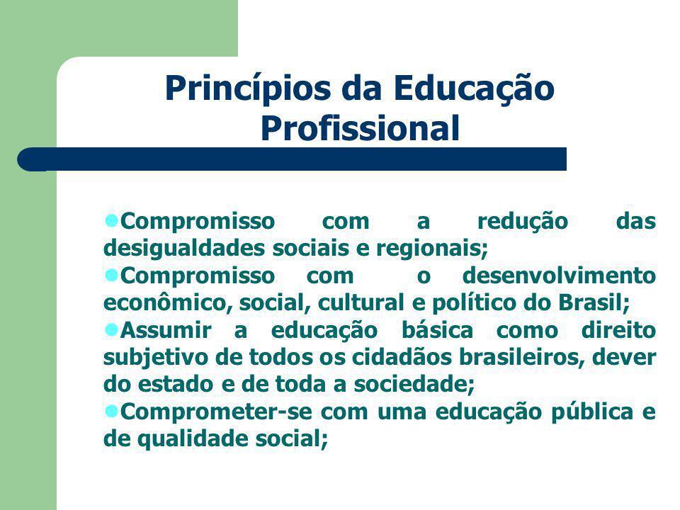 Compromisso com a redução das desigualdades sociais e regionais; Compromisso com o desenvolvimento econômico, social, cultural e político do Brasil; Assumir a educação básica como direito subjetivo de todos os cidadãos brasileiros, dever do estado e de toda a sociedade; Comprometer-se com uma educação pública e de qualidade social; Princípios da Educação Profissional