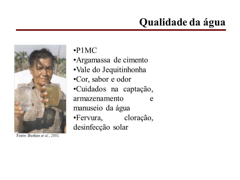 P1MC Argamassa de cimento Vale do Jequitinhonha Cor, sabor e odor Cuidados na captação, armazenamento e manuseio da água Fervura, cloração, desinfecção solar Fonte: Buehne et al., 2001 Qualidade da água