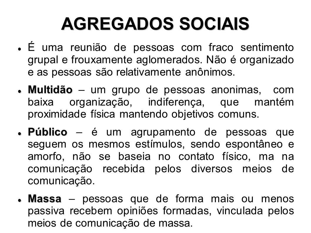 AGREGADOS SOCIAIS É uma reunião de pessoas com fraco sentimento grupal e frouxamente aglomerados.