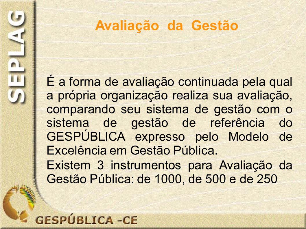 É a forma de avaliação continuada pela qual a própria organização realiza sua avaliação, comparando seu sistema de gestão com o sistema de gestão de referência do GESPÚBLICA expresso pelo Modelo de Excelência em Gestão Pública.