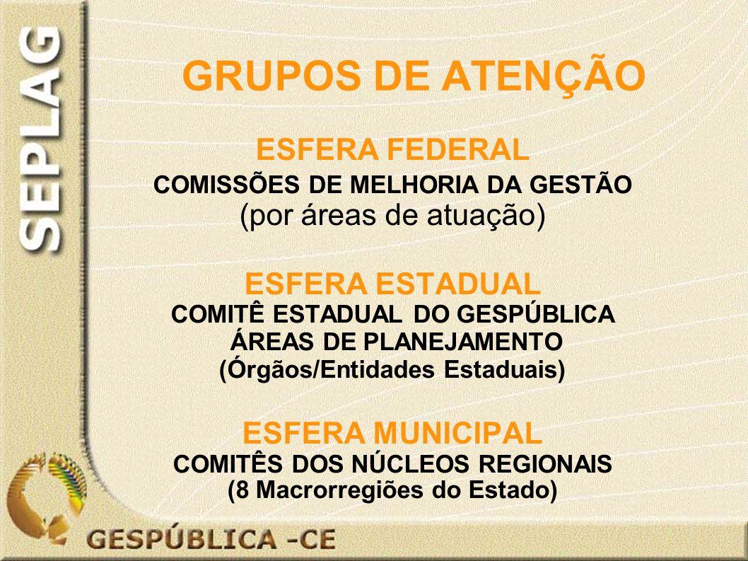 GRUPOS DE ATENÇÃO ESFERA FEDERAL COMISSÕES DE MELHORIA DA GESTÃO (por áreas de atuação) ESFERA ESTADUAL COMITÊ ESTADUAL DO GESPÚBLICA ÁREAS DE PLANEJAMENTO (Órgãos/Entidades Estaduais) ESFERA MUNICIPAL COMITÊS DOS NÚCLEOS REGIONAIS (8 Macrorregiões do Estado)