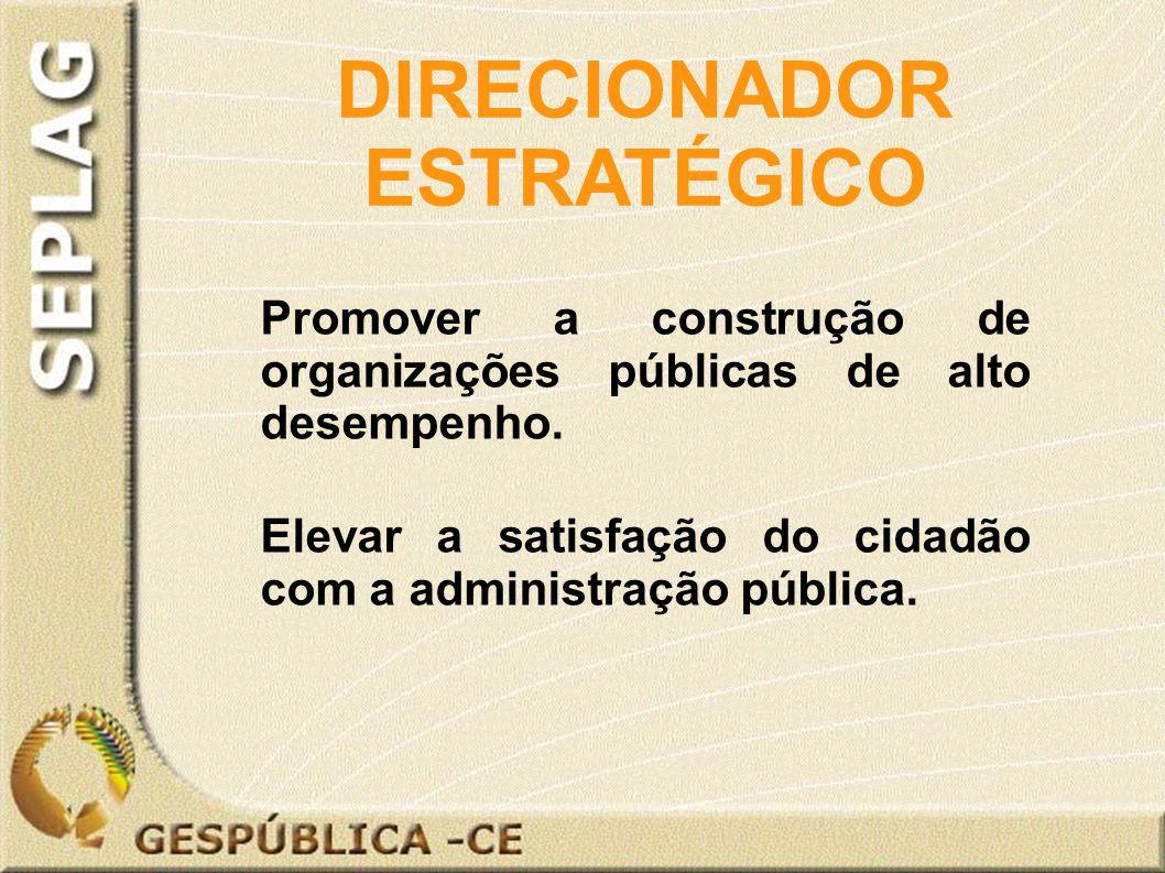 Promover a construção de organizações públicas de alto desempenho.