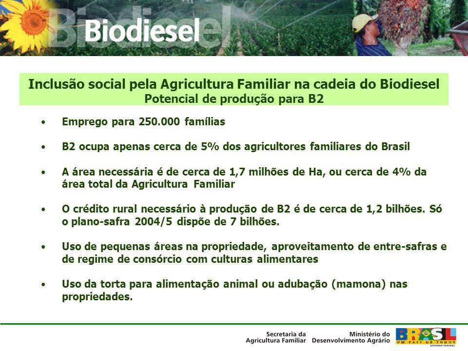 Emprego para 250.000 famílias B2 ocupa apenas cerca de 5% dos agricultores familiares do Brasil A área necessária é de cerca de 1,7 milhões de Ha, ou
