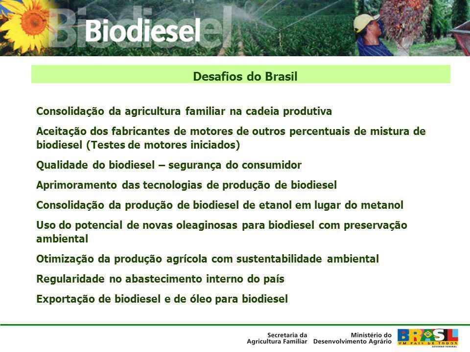 Consolidação da agricultura familiar na cadeia produtiva Aceitação dos fabricantes de motores de outros percentuais de mistura de biodiesel (Testes de