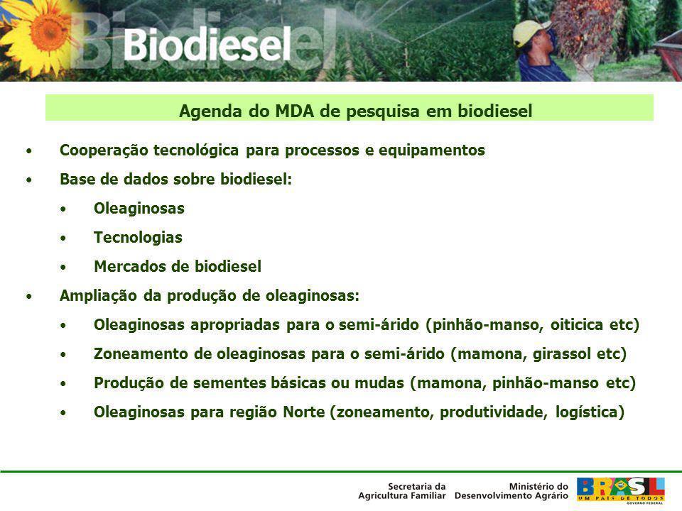 Cooperação tecnológica para processos e equipamentos Base de dados sobre biodiesel: Oleaginosas Tecnologias Mercados de biodiesel Ampliação da produçã