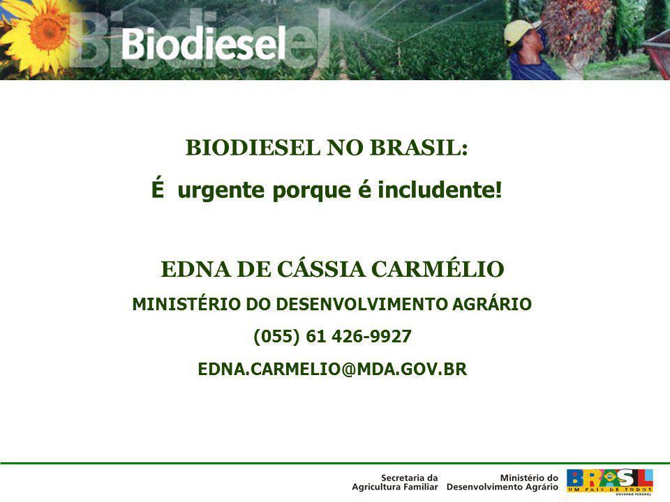 EDNA DE CÁSSIA CARMÉLIO MINISTÉRIO DO DESENVOLVIMENTO AGRÁRIO (055) 61 426-9927 EDNA.CARMELIO@MDA.GOV.BR BIODIESEL NO BRASIL: É urgente porque é inclu