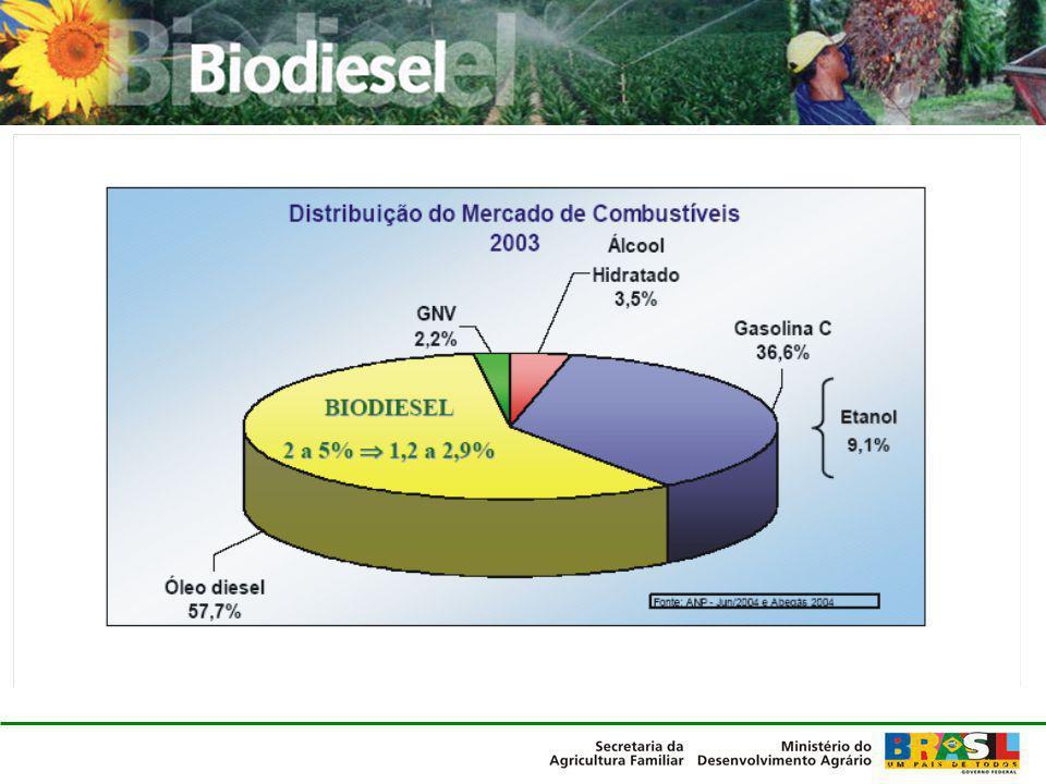 As iniciativas existentes até Dez/2004 EmpresaCapacidade nominal (milhões l/ano) RegiãoN° agricultores familiares Brasil Ecodiesel25 (opera até julho 2005) Nordeste15.000 Agropalma6 (opera até julho 2005) Norte100 com palma Ecomat8,4 (opera até julho 2005) Centro-Oeste0 Soyminas10 (em operação) Sudeste2.000 Adequim10 (opera até julho 2005) Centro-Oeste500 Biolix10 (opera até julho 2005) Sul0