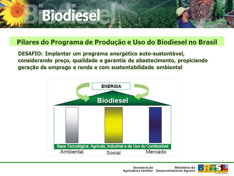 Consolidação da agricultura familiar na cadeia produtiva Aceitação dos fabricantes de motores de outros percentuais de mistura de biodiesel (Testes de motores iniciados) Qualidade do biodiesel – segurança do consumidor Aprimoramento das tecnologias de produção de biodiesel Consolidação da produção de biodiesel de etanol em lugar do metanol Uso do potencial de novas oleaginosas para biodiesel com preservação ambiental Otimização da produção agrícola com sustentabilidade ambiental Regularidade no abastecimento interno do país Exportação de biodiesel e de óleo para biodiesel Desafios do Brasil