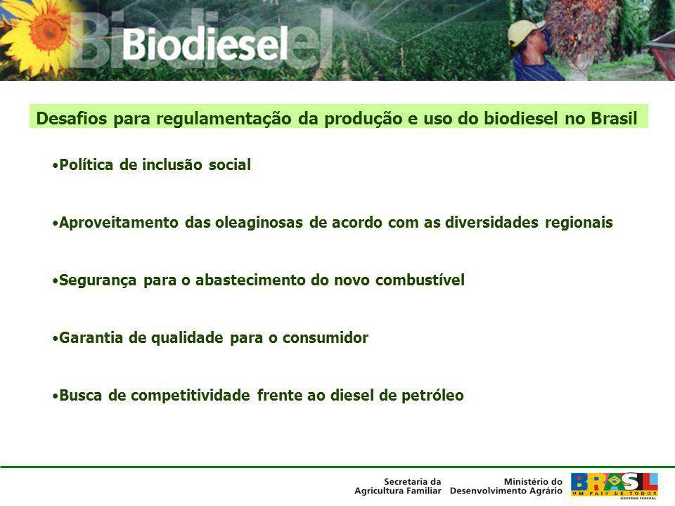 Cooperação tecnológica para processos e equipamentos Base de dados sobre biodiesel: Oleaginosas Tecnologias Mercados de biodiesel Ampliação da produção de oleaginosas: Oleaginosas apropriadas para o semi-árido (pinhão-manso, oiticica etc) Zoneamento de oleaginosas para o semi-árido (mamona, girassol etc) Produção de sementes básicas ou mudas (mamona, pinhão-manso etc) Oleaginosas para região Norte (zoneamento, produtividade, logística) Agenda do MDA de pesquisa em biodiesel