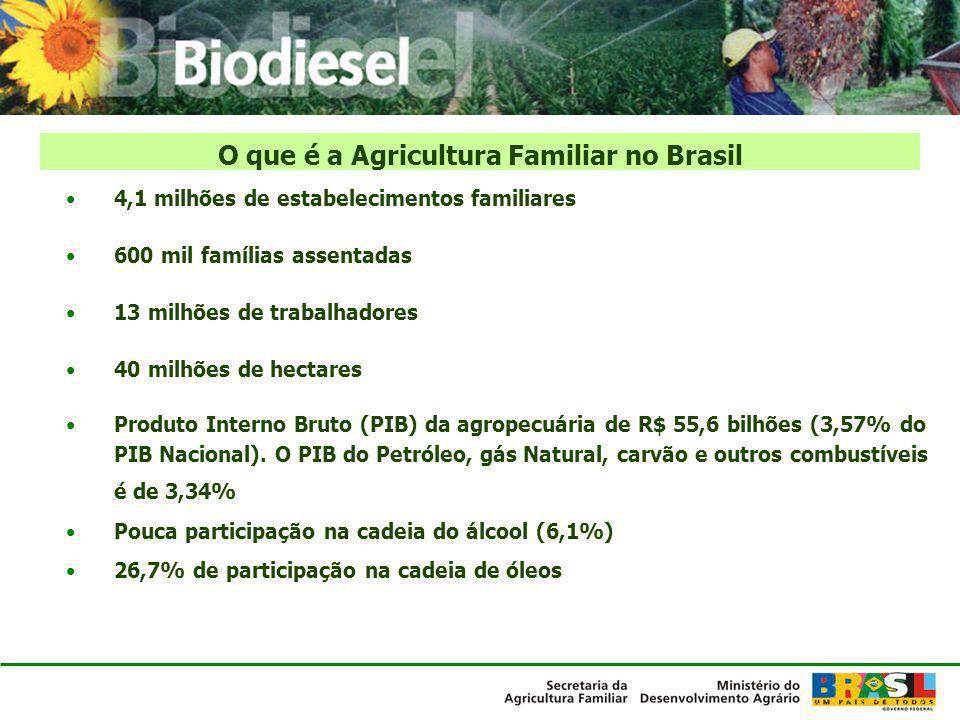 4,1 milhões de estabelecimentos familiares 600 mil famílias assentadas 13 milhões de trabalhadores 40 milhões de hectares Produto Interno Bruto (PIB)