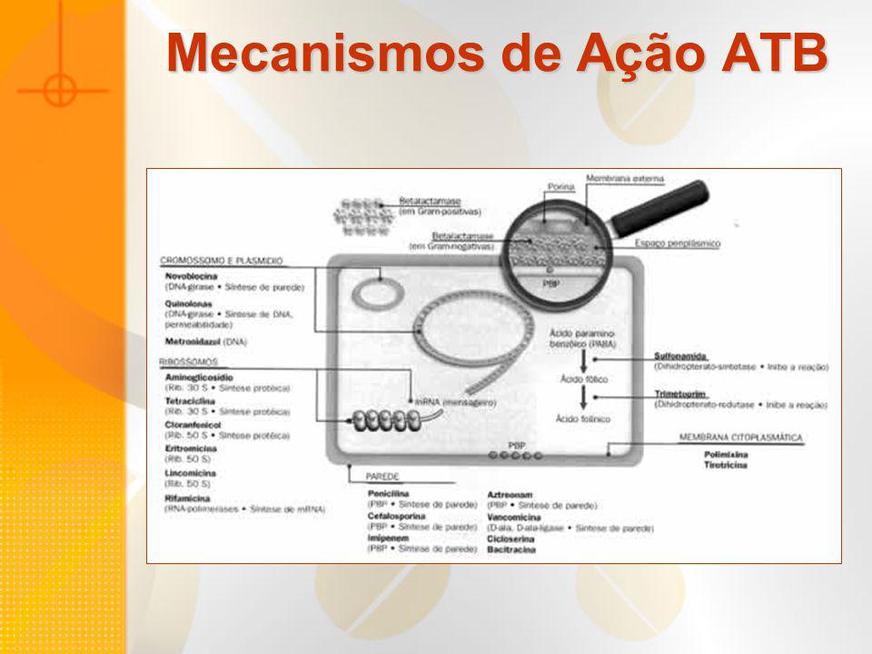 Distribuição das taxas médias de resistência antimicrobiana (%), jan 1998 a jun 2002 Microrganismo UTI Outras unidades MRSA SCN-MR Enterococos resistente a vancomicina P.aeruginosa resistente a ciprofloxacina P.aeruginosa resistente a levofloxacina P.aeruginosa resistente a imipenem P.aeruginosa resistente a ceftazidima P.aeruginosa resistente a piperacilina Enterobacter spp resistente a cefalosp.