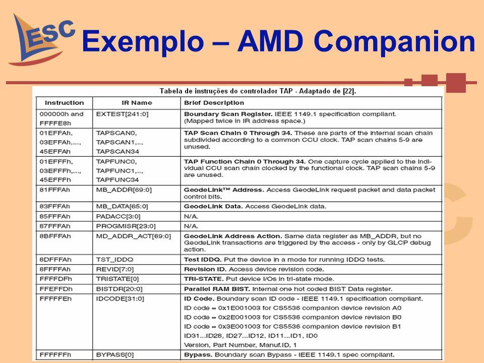 Exemplo – AMD Companion