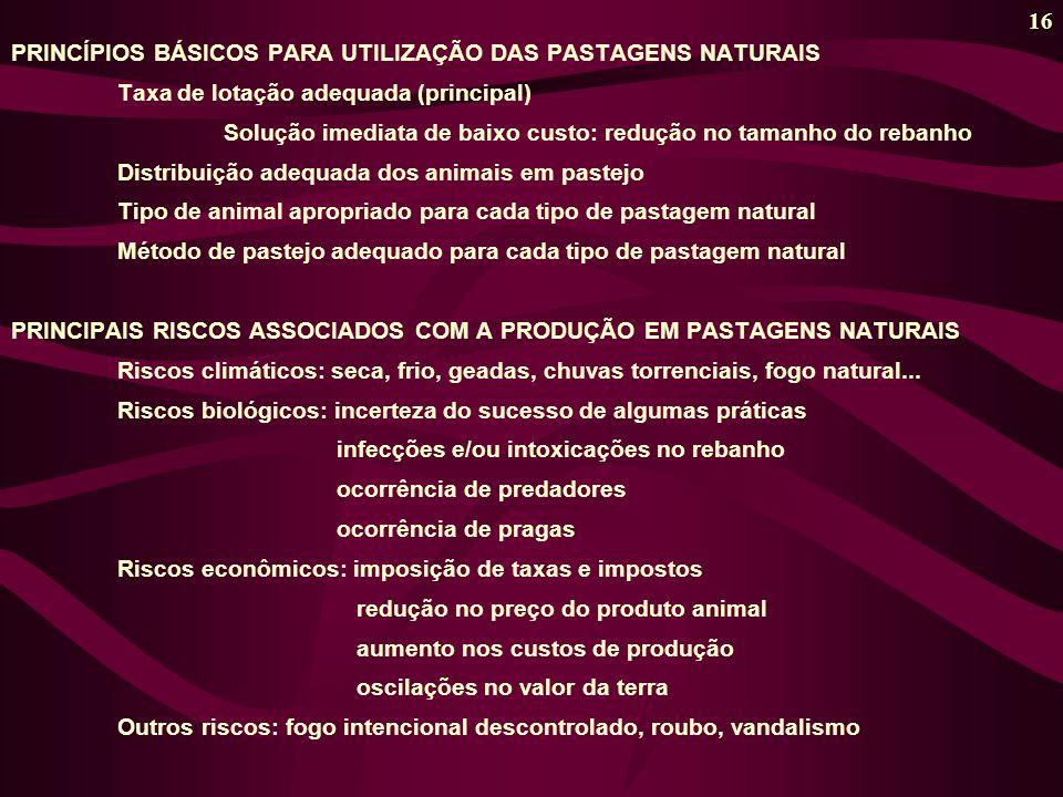 16 PRINCÍPIOS BÁSICOS PARA UTILIZAÇÃO DAS PASTAGENS NATURAIS Taxa de lotação adequada (principal) Solução imediata de baixo custo: redução no tamanho do rebanho Distribuição adequada dos animais em pastejo Tipo de animal apropriado para cada tipo de pastagem natural Método de pastejo adequado para cada tipo de pastagem natural PRINCIPAIS RISCOS ASSOCIADOS COM A PRODUÇÃO EM PASTAGENS NATURAIS Riscos climáticos: seca, frio, geadas, chuvas torrenciais, fogo natural...