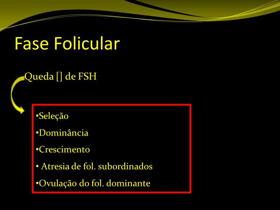 Fase Folicular Queda [] de FSH Seleção Dominância Crescimento Atresia de fol. subordinados Ovulação do fol. dominante