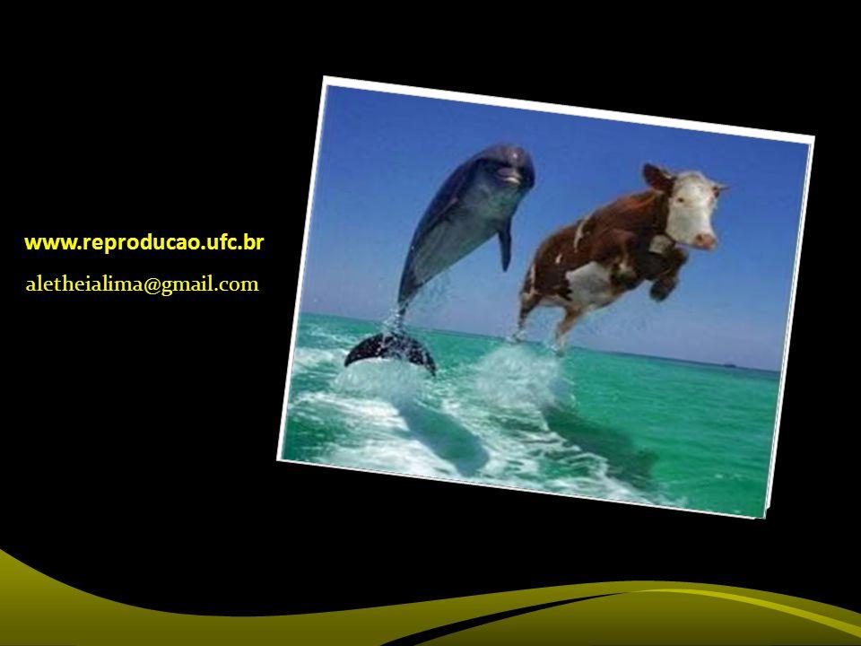 www.reproducao.ufc.br aletheialima@gmail.com