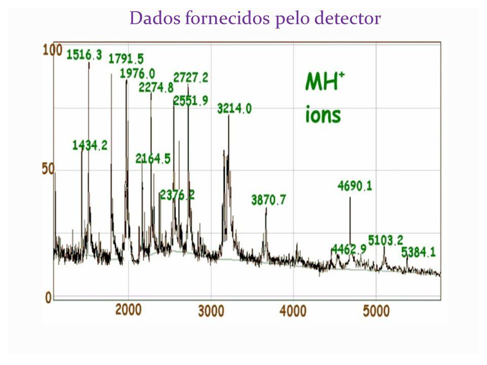 Dados fornecidos pelo detector