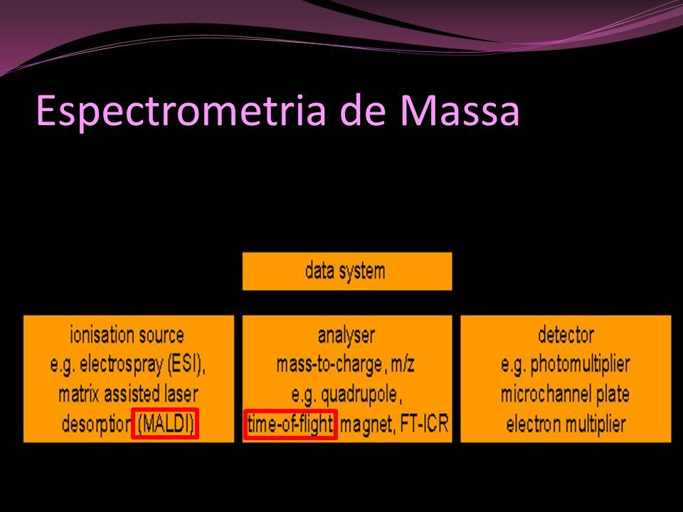 Tipos de detectores: Multiplicador de elétrons Multiplicador de luz Placa de microcanais