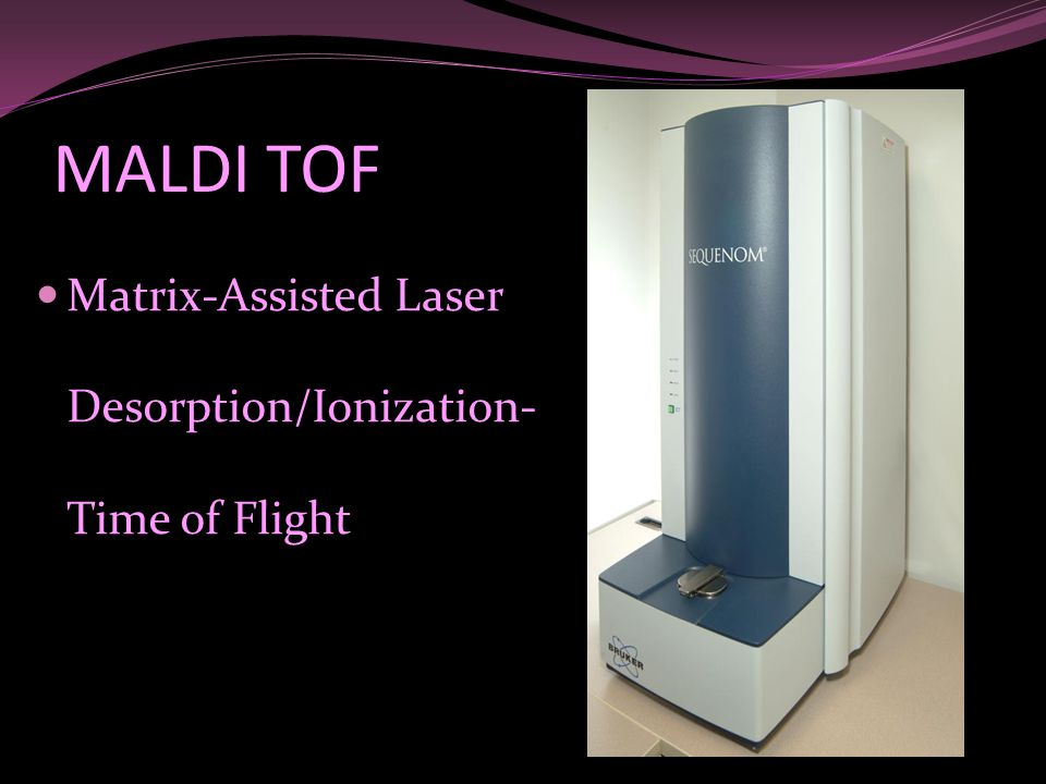 MALDI TOF Matrix-Assisted Laser Desorption/Ionization- Time of Flight