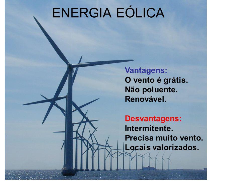 ENERGIA EÓLICA Vantagens: O vento é grátis. Não poluente. Renovável. Desvantagens: Intermitente. Precisa muito vento. Locais valorizados.