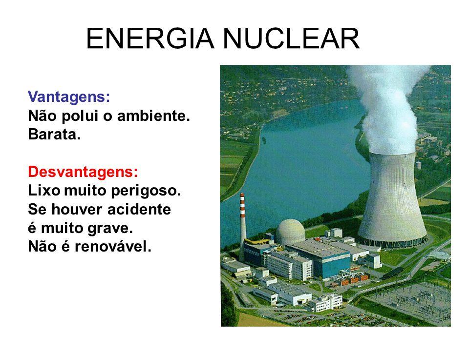 ENERGIA NUCLEAR Vantagens: Não polui o ambiente. Barata. Desvantagens: Lixo muito perigoso. Se houver acidente é muito grave. Não é renovável.