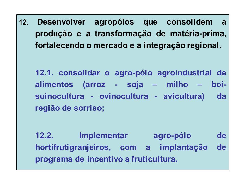 12. Desenvolver agropólos que consolidem a produção e a transformação de matéria-prima, fortalecendo o mercado e a integração regional. 12.1. consolid