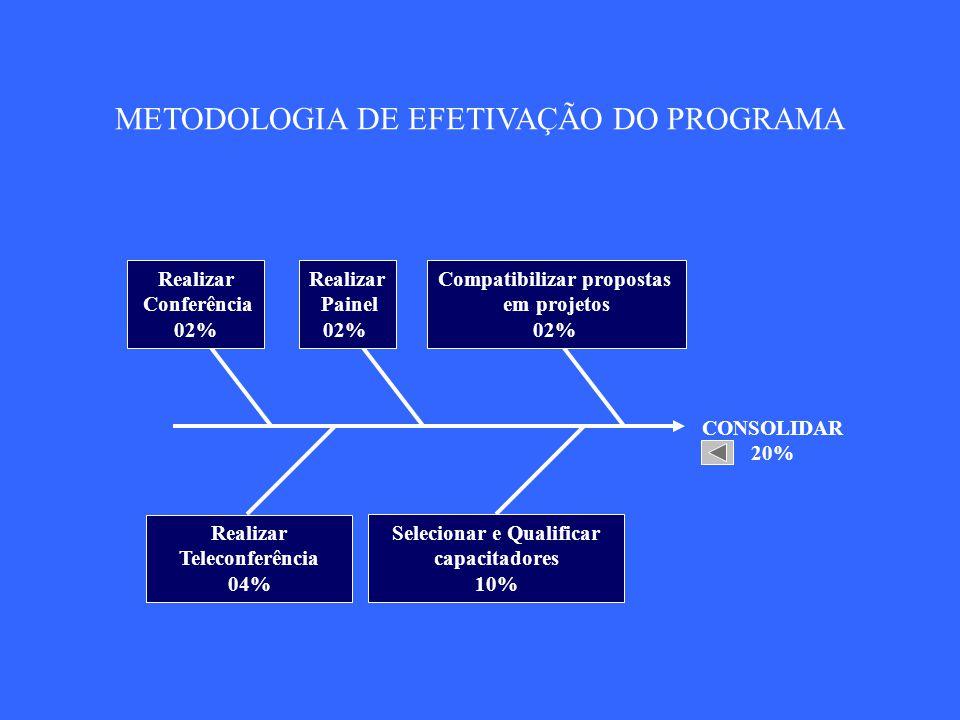 AVALIAR 10% Averiguar o impacto no contexto 02% Promover Convenção 02% Promover Congresso 06% METODOLOGIA DE EFETIVAÇÃO DO PROGRAMA