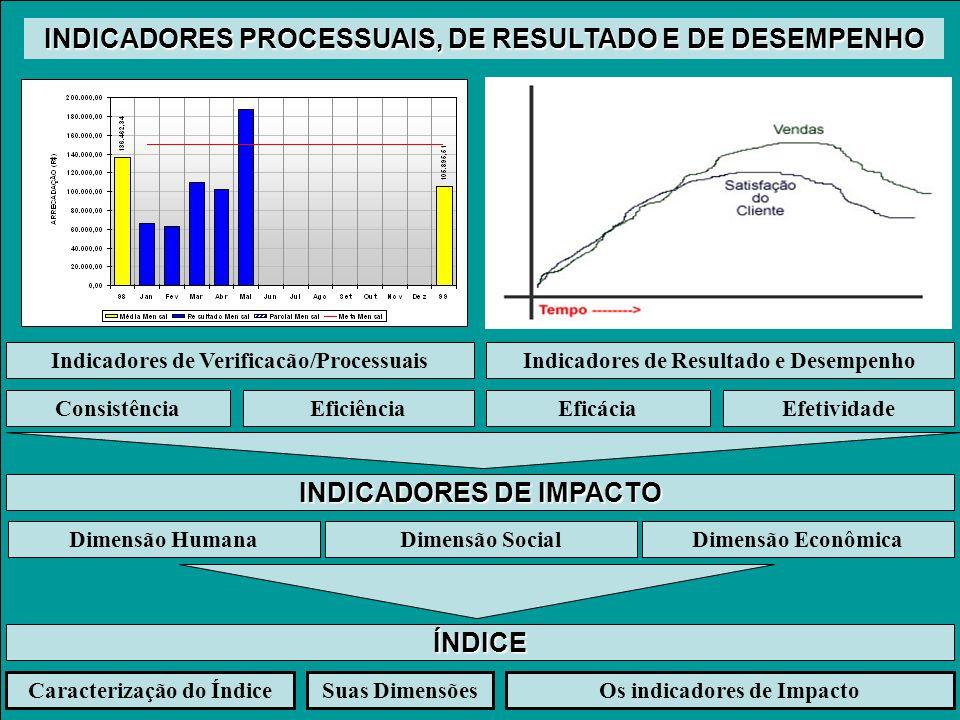 INDICADORES PROCESSUAIS, DE RESULTADO E DE DESEMPENHO Indicadores de Verificacão/ProcessuaisIndicadores de Resultado e Desempenho ConsistênciaEficiênciaEficáciaEfetividade INDICADORES DE IMPACTO ÍNDICE Caracterização do ÍndiceSuas DimensõesOs indicadores de Impacto Dimensão SocialDimensão EconômicaDimensão Humana