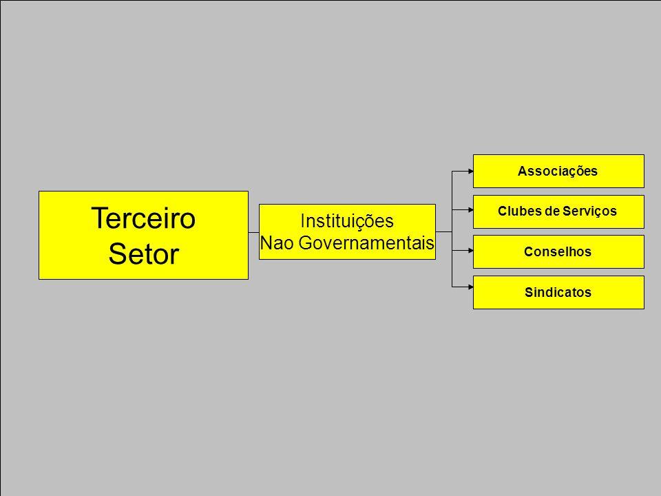 Terceiro Setor Instituições Nao Governamentais Associações Clubes de Serviços Conselhos Sindicatos