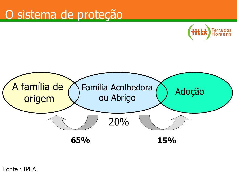 O sistema de proteção A família de origem Família Acolhedora ou Abrigo Adoção 15% 65% 20% Fonte : IPEA