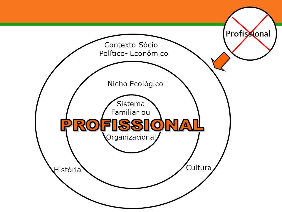 Organizacional Sistema Familiar ou Nicho Ecológico Cultura História Contexto Sócio - Político- Econômico Profissional