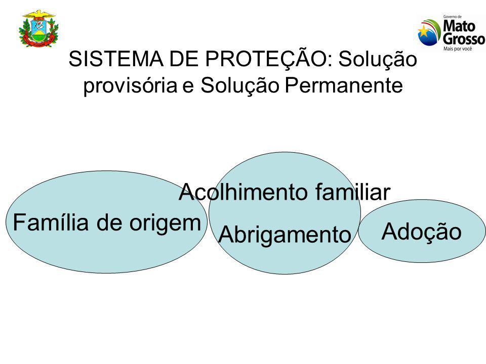 SISTEMA DE PROTEÇÃO: Solução provisória e Solução Permanente Família de origem Acolhimento familiar Abrigamento Adoção