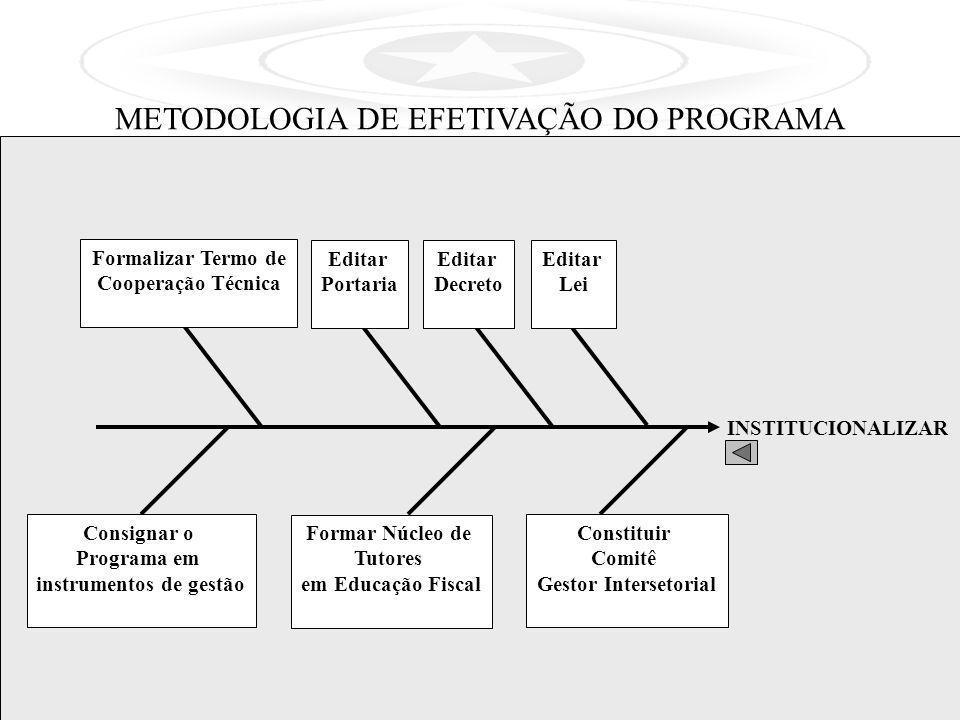 INSTITUCIONALIZAR METODOLOGIA DE EFETIVAÇÃO DO PROGRAMA Editar Lei Editar Decreto Formalizar Termo de Cooperação Técnica Editar Portaria Constituir Co