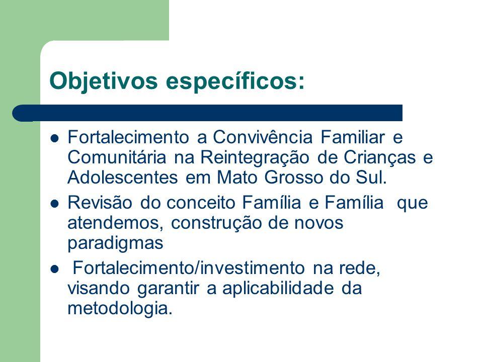 Objetivos específicos: Fortalecimento a Convivência Familiar e Comunitária na Reintegração de Crianças e Adolescentes em Mato Grosso do Sul. Revisão d