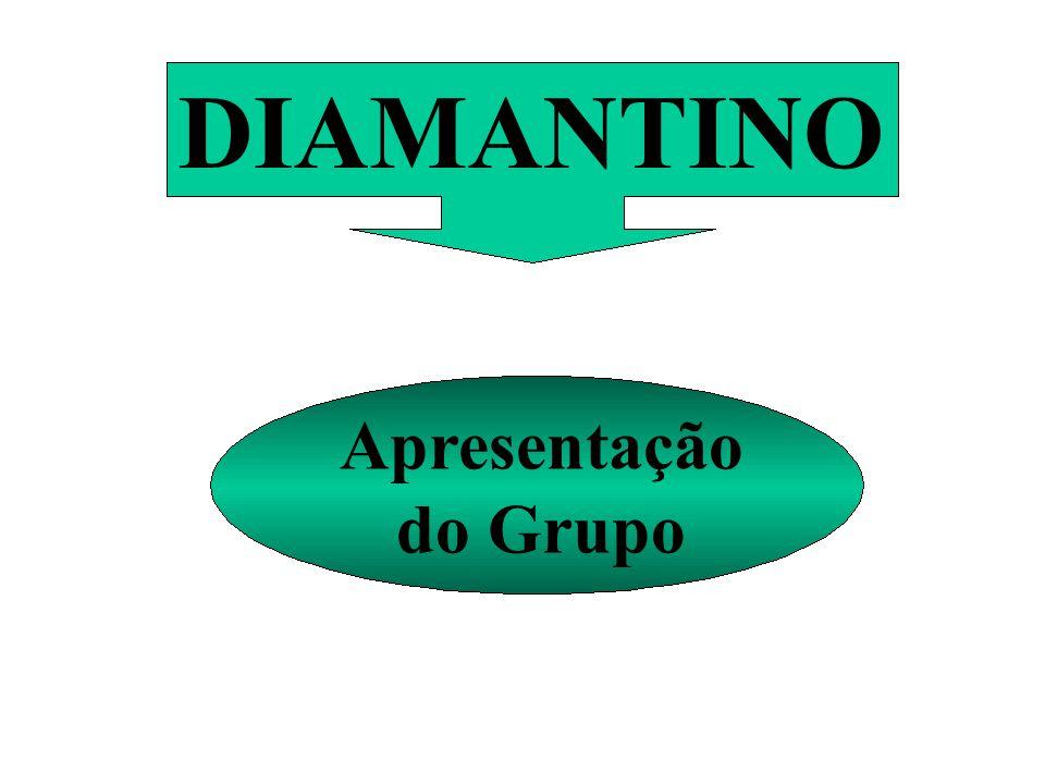 DIAMANTINO Apresentação do Grupo