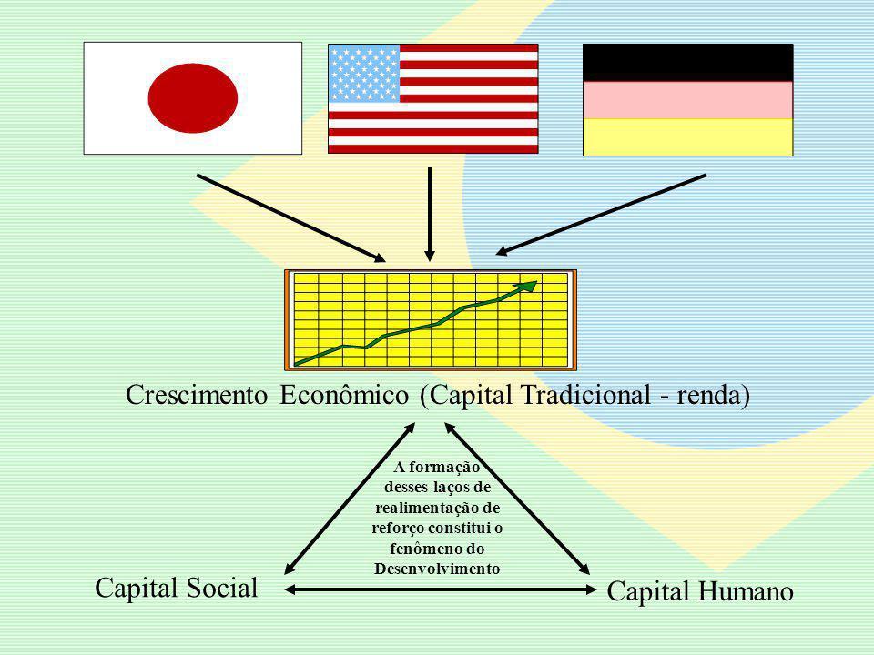 Capital humano Saúde Alimentação Educação Cultura Pesquisa Empreendedorismo Capital Social Reconhecimento Mútuo Confiança Reciprocidade Solidariedade Cooperação Parceria Empoderamento – Democratização do Poder Capital Tradicional (Renda) PIB Recursos Naturais