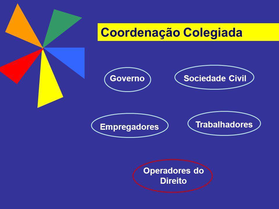 Coordenação Colegiada GovernoSociedade Civil Empregadores Trabalhadores Operadores do Direito