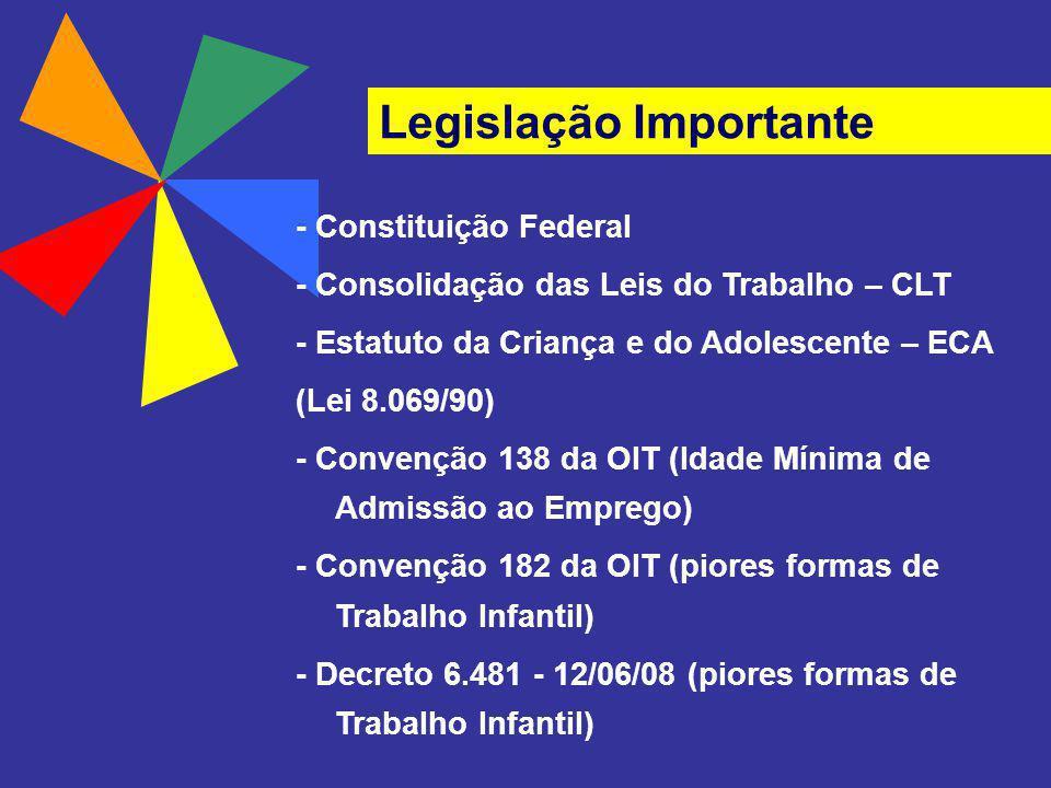 Legislação Importante - Constituição Federal - Consolidação das Leis do Trabalho – CLT - Estatuto da Criança e do Adolescente – ECA (Lei 8.069/90) - C