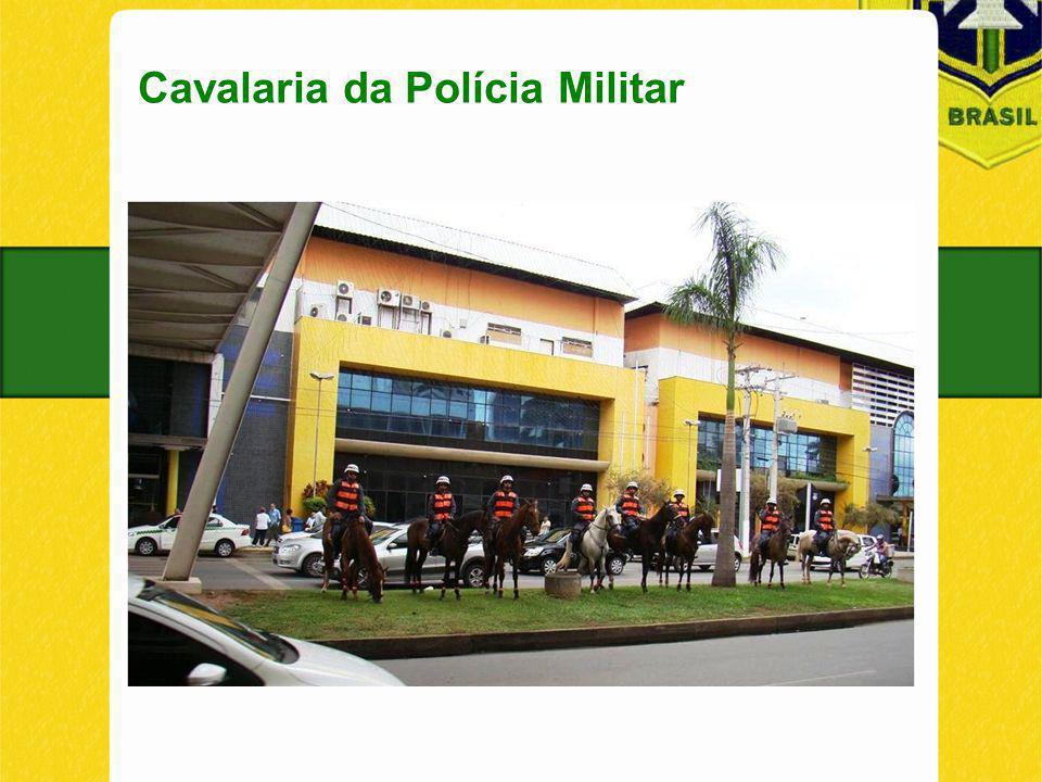 Cavalaria da Polícia Militar dhfskdhfkjsadhkjfhsajkdf