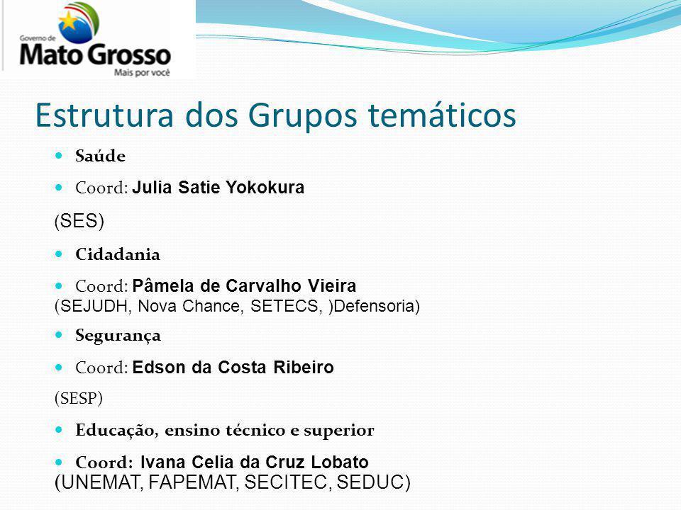Estrutura dos Grupos temáticos Saúde Coord: Julia Satie Yokokura ( SES) Cidadania Coord: Pâmela de Carvalho Vieira ( SEJUDH, Nova Chance, SETECS, )Def
