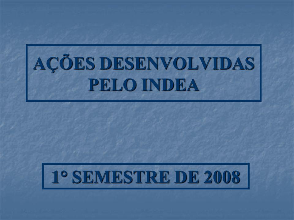 AÇÕES DESENVOLVIDAS PELO INDEA 1° SEMESTRE DE 2008