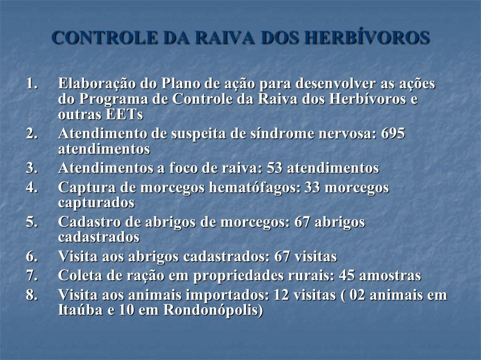 CONTROLE DA RAIVA DOS HERBÍVOROS 1.Elaboração do Plano de ação para desenvolver as ações do Programa de Controle da Raiva dos Herbívoros e outras EETs