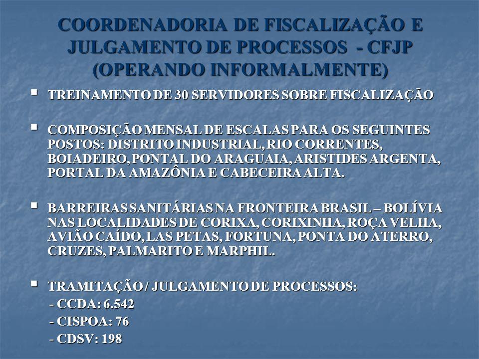 COORDENADORIA DE FISCALIZAÇÃO E JULGAMENTO DE PROCESSOS - CFJP (OPERANDO INFORMALMENTE) TREINAMENTO DE 30 SERVIDORES SOBRE FISCALIZAÇÃO TREINAMENTO DE