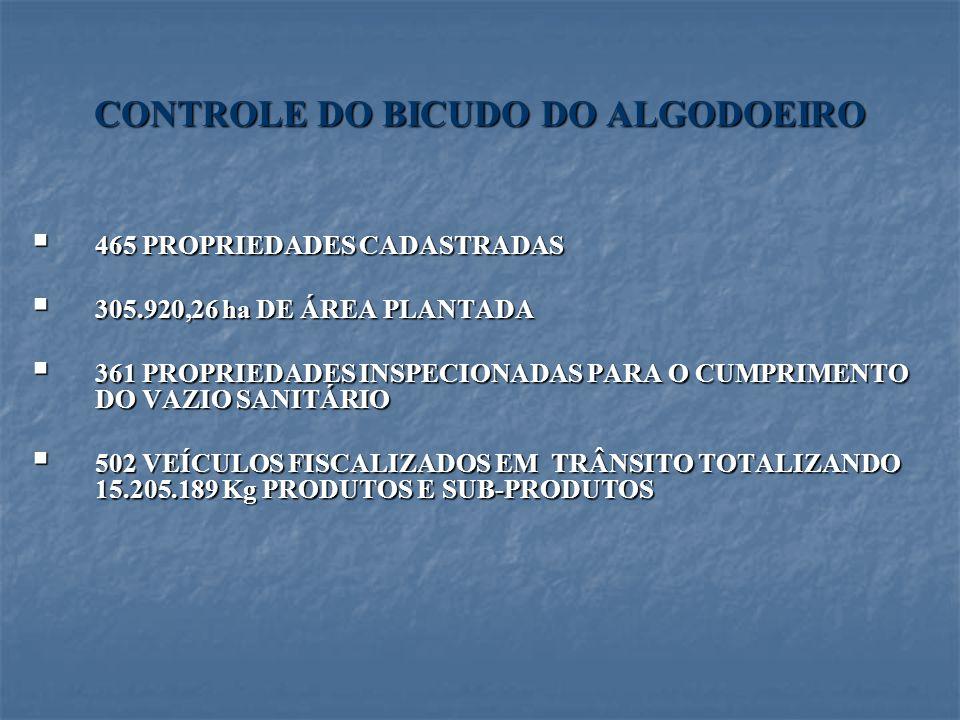 CONTROLE DO BICUDO DO ALGODOEIRO 465 PROPRIEDADES CADASTRADAS 465 PROPRIEDADES CADASTRADAS 305.920,26 ha DE ÁREA PLANTADA 305.920,26 ha DE ÁREA PLANTA