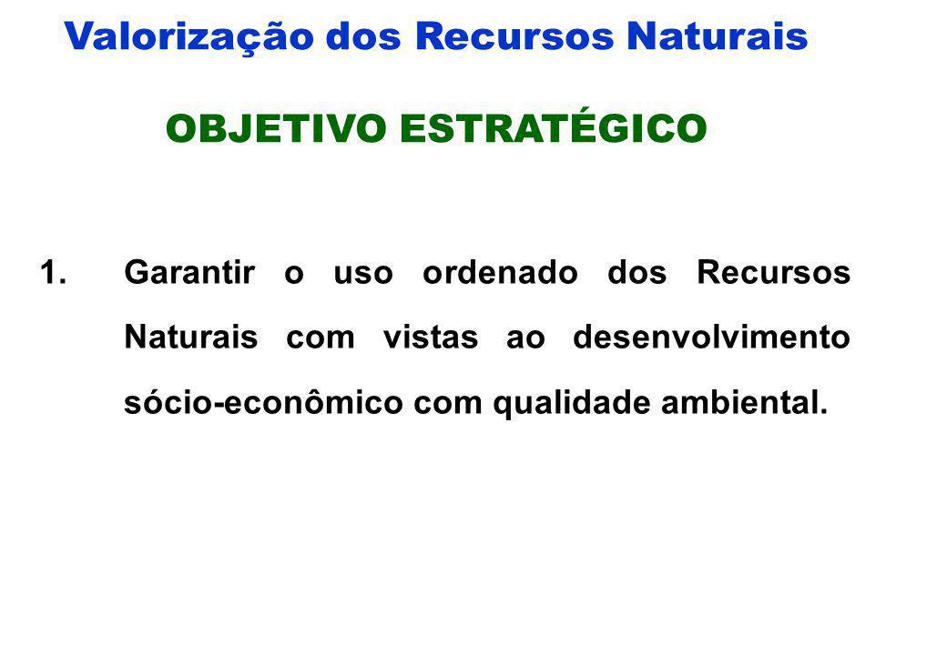 Valorização dos Recursos Naturais Instituições representadas: SEC, SETEC, SEFAZ, SEDTUR, SEDUC, SEPLAN, SES, SICM, SECITES, FEMA. Nº de participantes: