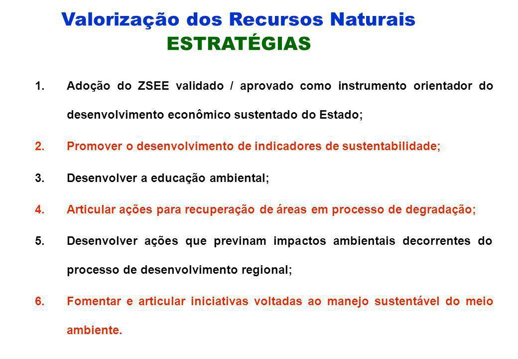 Valorização dos Recursos Naturais OBJETIVO ESTRATÉGICO 1.Garantir o uso ordenado dos Recursos Naturais com vistas ao desenvolvimento sócio-econômico c