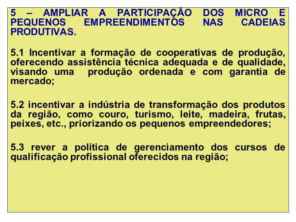 5 – AMPLIAR A PARTICIPAÇÃO DOS MICRO E PEQUENOS EMPREENDIMENTOS NAS CADEIAS PRODUTIVAS.