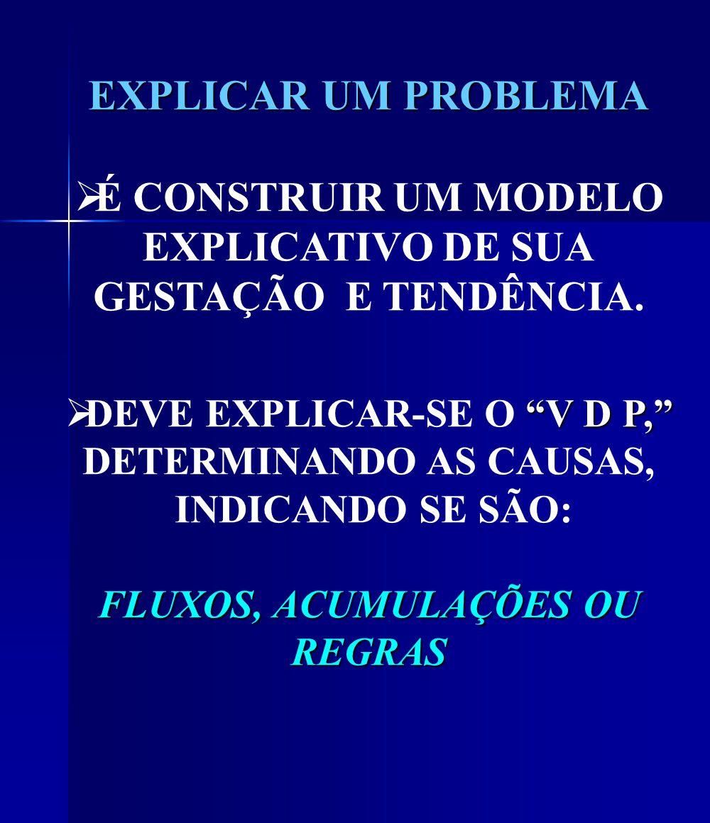 EXPLICAR UM PROBLEMA É CONSTRUIR UM MODELO EXPLICATIVO DE SUA GESTAÇÃO E TENDÊNCIA.